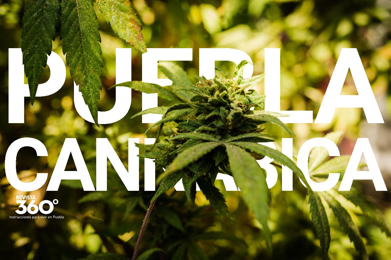El 420 Angelopolitano Así Festejan Los Poblanos El Día De La